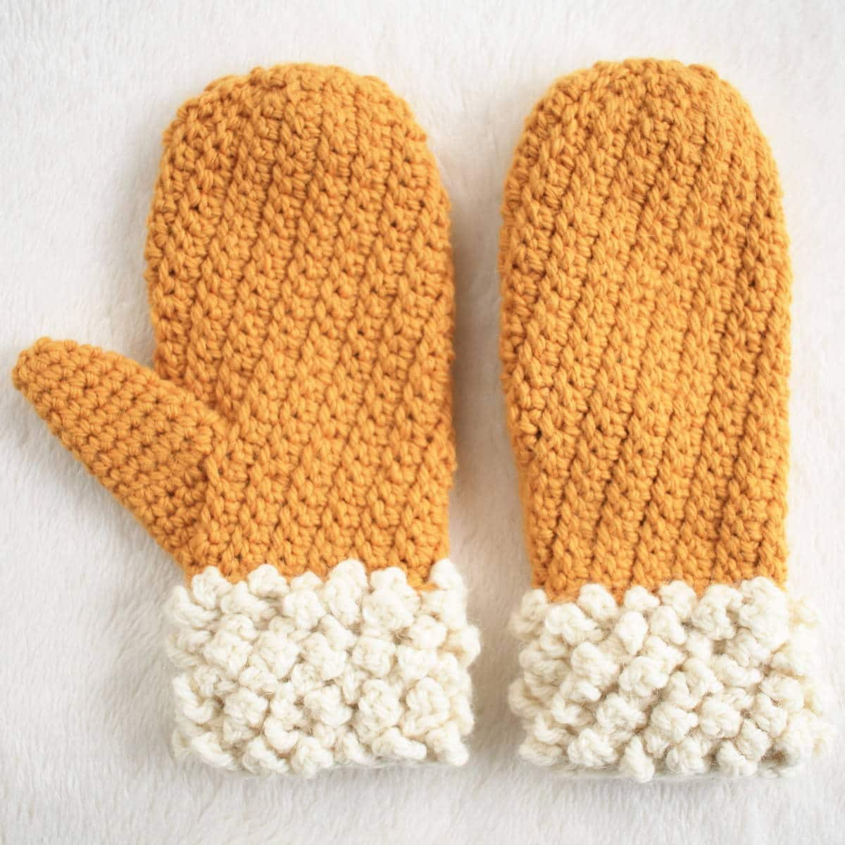 Adult Two Toned Mitten Winter Spun Free Pattern
